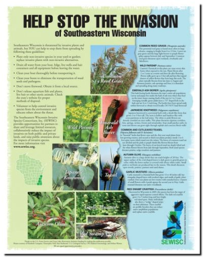 New Invasive Species Educational Poster