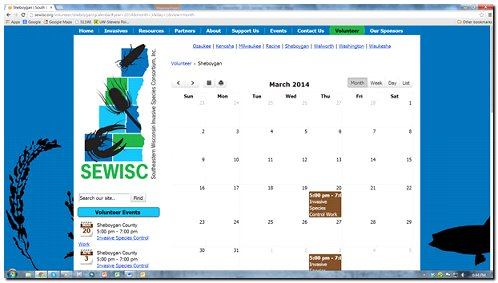google calendar month view