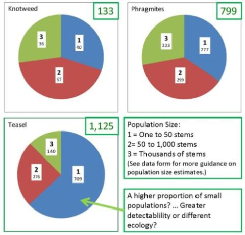 invasive species population pie charts
