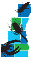 Southeastern Wisconsin Invasive Species Consortium, Inc